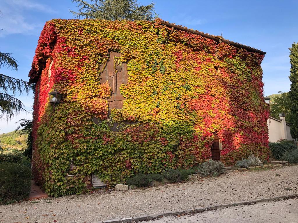 Toskania budynek w roślinach
